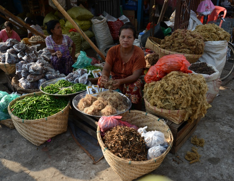 Rakhine State13