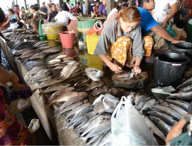 Rakhine State15